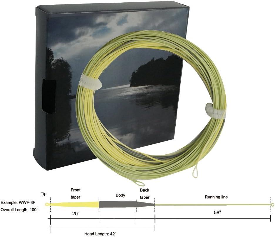 Aventik Fly Line Sure Cast Tri-Tone 42-50ft Head Wind-Cutter Trout Line Switch Line