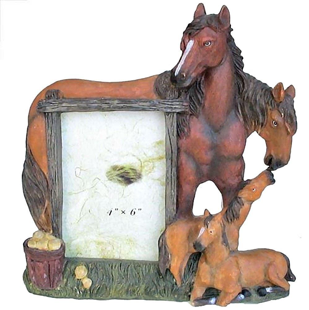 –Marco 3D caballo potro Western Cowboy Decoración Westernranch