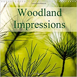 Woodland Impressions 2016: A Series of Colourful Images Depicting Pine Needles and Other Woodland Foliage (Calvendo Nature)