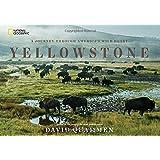 Yellowstone: A Journey Through America's Wild Heart