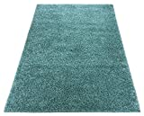 Shaggy Collection Solid Color Shag Rug Area Rugs Different Color Options Available (Light Teal Blue, 3'3'x5')