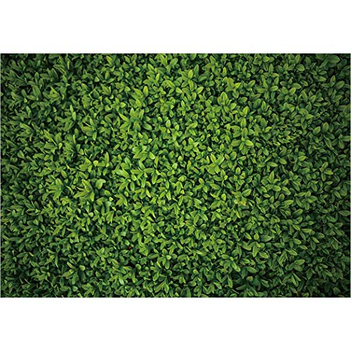 Allenjoy 7x5ft Green Leaves Wall Backdrop for Photography Grass Floordrop Pictures Background Spring Birthday Party Ground Decor Outdoorsy Theme Newborn Baby Bridal Shower Wedding Photo Studio Booth (Best Fake Grass Reviews)