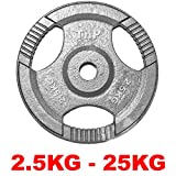 TNP Accessories Cast Iron Standard 1' Radial TRI-GRIP Hammertone Disc Weight Plates EZ Bar Curl Barbell Dumbbell Weight Plate Fitness Gym 2.5kg to 25kg Weights Set