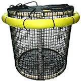 R&R CBP-L-RD Large Collapsible Fishing Bait