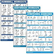 QuickFit 3 Pack - Dumbbell Workouts + Bodyweight Exercises + Stretching Routine Poster Set - Set of 3 Workout