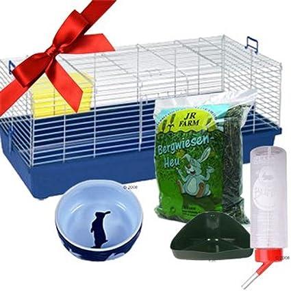 Enano de conejo jaula de interior - Juego de iniciación ...