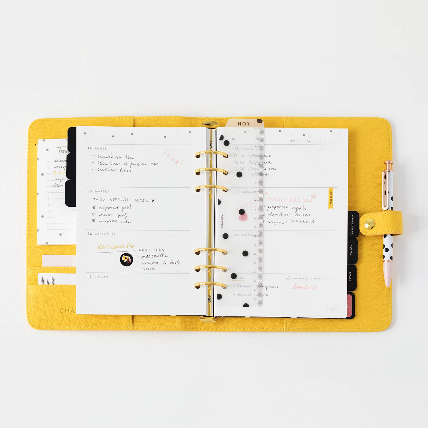 Amazon.com : Undated Diary Refill A5 : Office Products