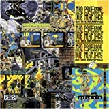 Dub maniacs on the rampage by Mad Professor