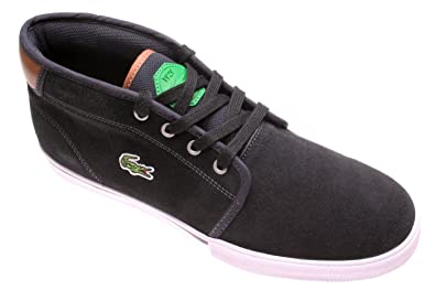 7dabfc3f6 Lacoste Mens Mens Ampthill Trib Trainers in Dark Blue - UK 7  Amazon ...