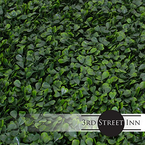 Artificial Hedge - Outdoor Artificial Plant - Great Boxwood and Ivy Substitute - Sound Diffuser Privacy Fence Hedge - Topiary Boxwood Greenery Panels (12, Boxwood) by 3rd Street Inn