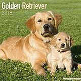 Golden Retriever Calendar - Dog Breed Calendars - 2017 - 2018 wall Calendars - 16 Month by Avonside