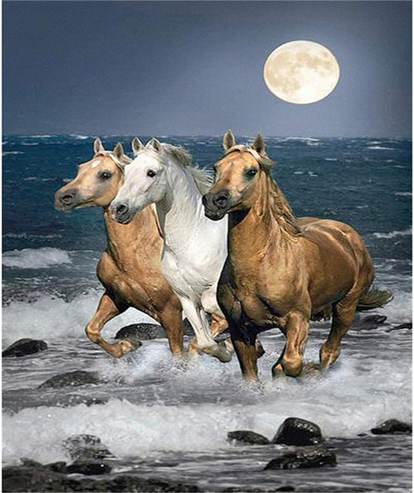 Sunnay 5D Diamond pintura de diamantes, DIY Completo Painting para manualidades, Kits Rhinestone Fotos Arte,Tres caballos,30 x 40 cm