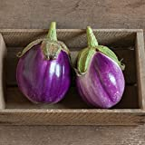 buy David's Garden Seeds Eggplant Rosa Bianca AZ2605 (Purple) 50 Non-GMO, Organic Heirloom Seeds now, new 2019-2018 bestseller, review and Photo, best price $7.95