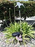 Cheap Hummingbird Solar Wing Down Garden Yard Stake Light Set of 2pcs