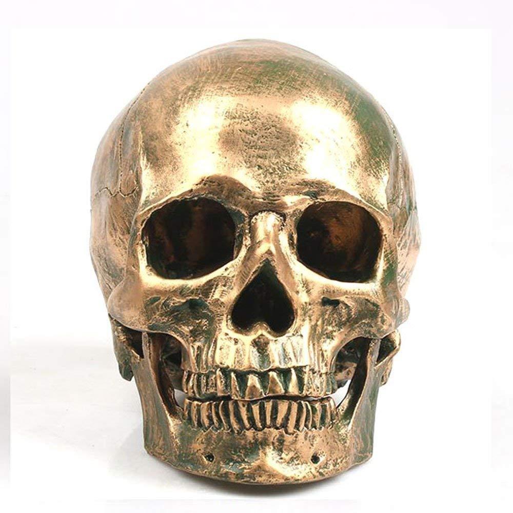 TAO+ Retro Human Skull Statue Human Head Resin Copy Medical Model Pagan Skull Sculpture by TAO+