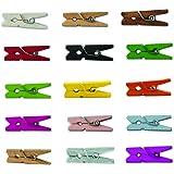LWR Crafts mini mollette in legno in 15 colori, 100 pezzi per confezione, misura 2,5 cm All