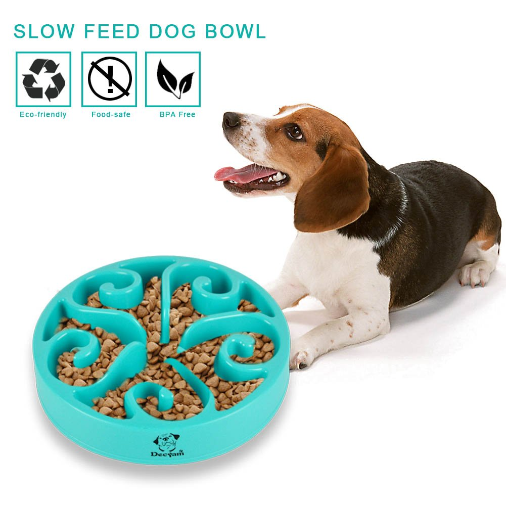 best mat people slow bowl the review feeder from just snuffle watch wooly dog