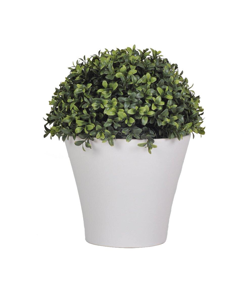 amazoncom house of silk flowers artificial halfball boxwood topiary matte white home u0026 kitchen