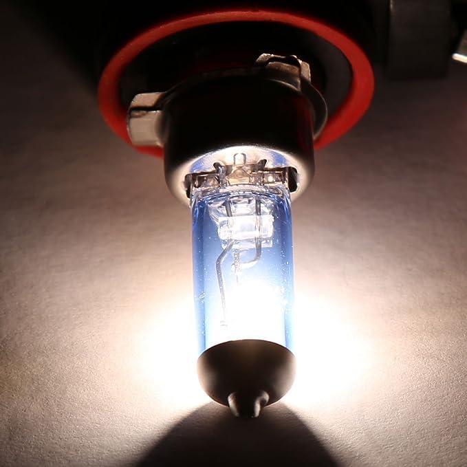 Amazon.com: eDealMax 2 PC 100W H11 Super White niebla bombilla halógena Jefe de luz de lámpara Para el coche: Automotive