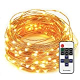 LED String Lights 33ft with 100 LEDs Dimmable with Remote Control Waterproof Decorative Lights for Bedroom, Garden, Patio, Party, Wedding (Copper Wire Lights, Warm White)
