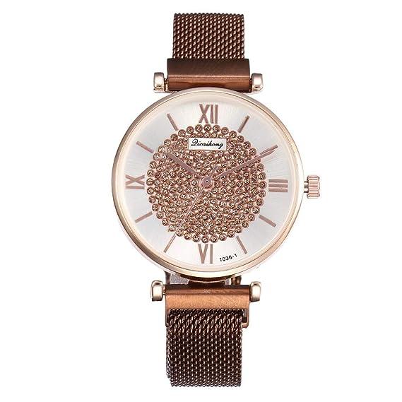DAYLIN Relojes Mujer Moda Casual Reloj de Pulsera Analógico ...