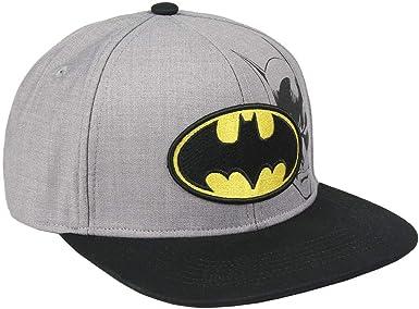 Artesania Cerda Gorra Visera Plana Logo Batman, Gris (Gris Gris ...