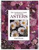 The Gardener's Guide to Growing Asters