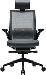 SIDIZ T80 Highly Adjustable Ergonomic Office Chair (T800HLDA): German Ultimate Sync Mechanism for Extreme Comfort, Headrest, Ventilated Mesh Back, Lumbar Support, 3D Arm, Seat Slide/Slope (Dark Gray)