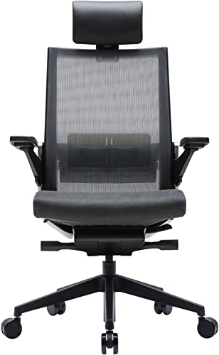 SIDIZ T80 Highly Adjustable Ergonomic Office Chair : German Ultimate Sync Mechanism