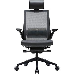 SIDIZ T80 Home Office Desk Chair