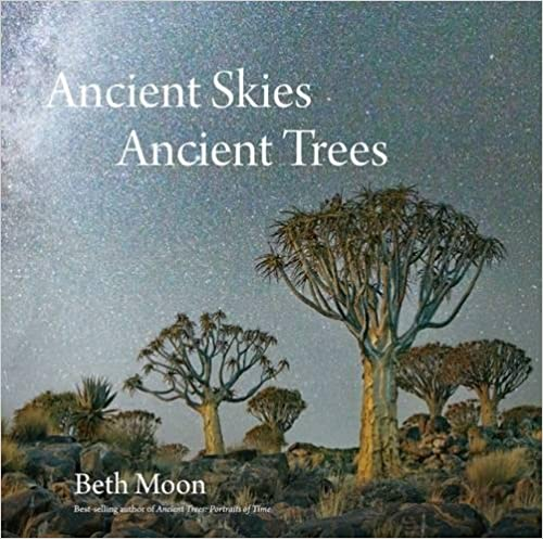 Ancient Skies Ancient Trees