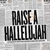 Raise a Hallelujah (Studio Version): more info
