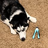 Best Dog Pet Nail Clippers & Trimmer - Quality