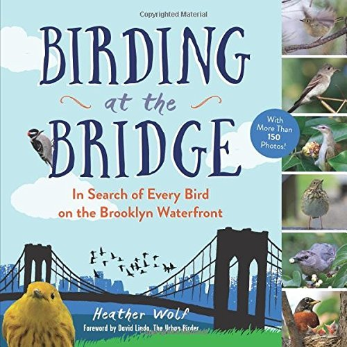 Brooklyn Bridge Snow - Birding at the Bridge: In Search of Every Bird on the Brooklyn Waterfront by Heather Wolf (2016-06-14)