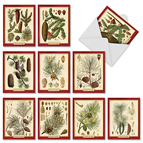 M10011XS Pining For Christmas: 10 Assorted Christmas Note Cards Showcasing Vintage Pine Cone Classification Images For The Holiday Season,w/White Envelopes.