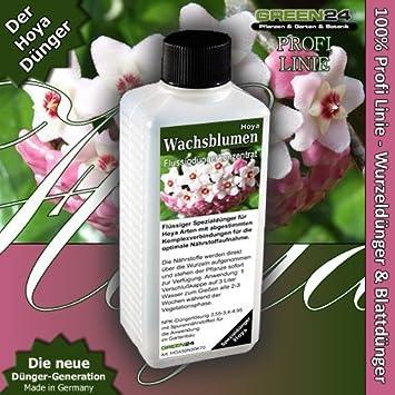 Hoya Plant comida - fertilizante líquido alta tecnología NPK, raíz, suelo, Foliar, fertilizantes - planta profesional comida: Amazon.es: Jardín