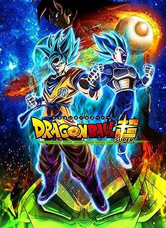 Dragon Ball Super Broly Super Saiyan 24inch X 33inch Plastic Poster Waterproof Anti Fade Outdoorgardenbathroom