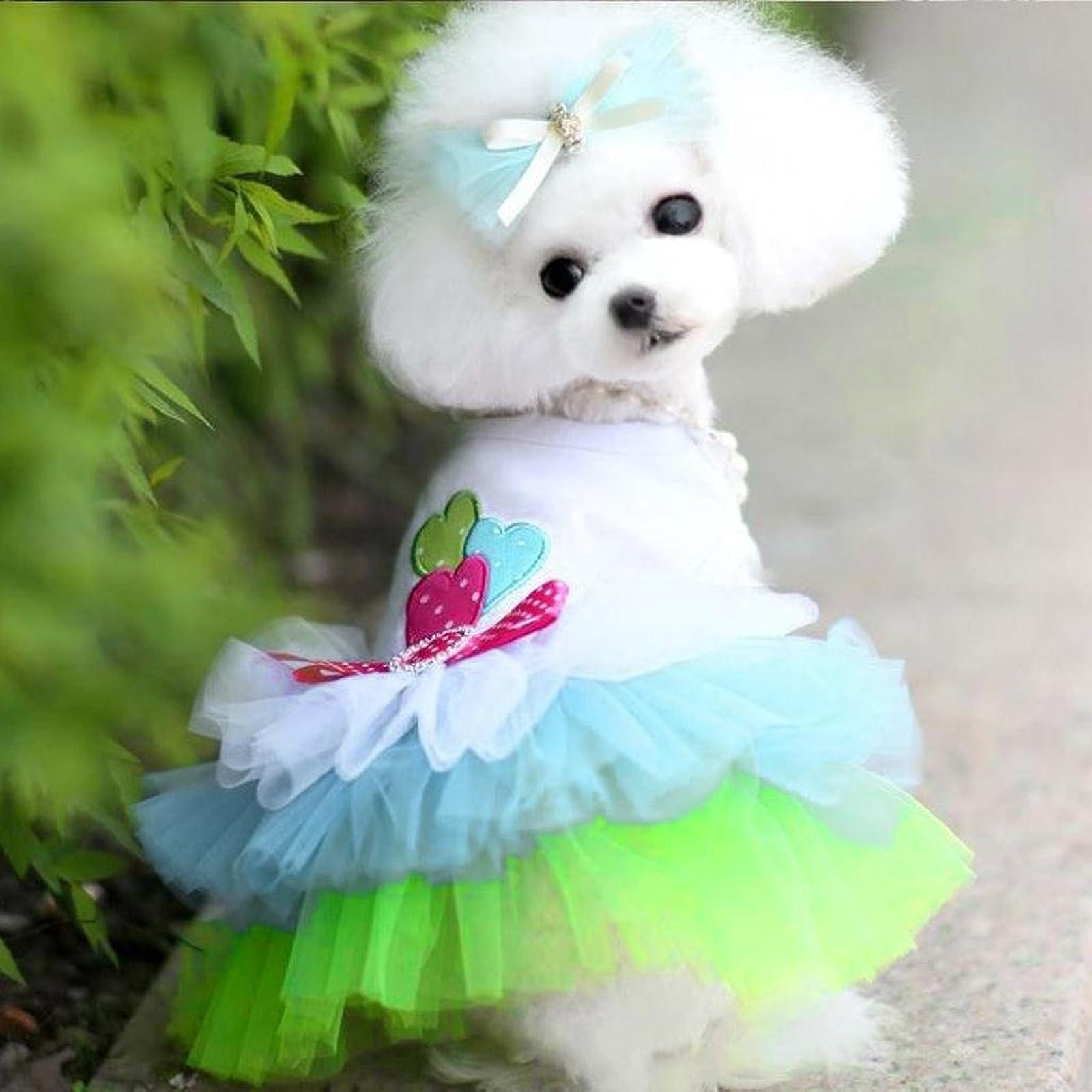 OutTop Girl Dog Dress Lace Princess Tutu WSM60224084S_YD - 5