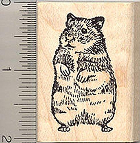 Hamster Rubber Stamp, Syrian Golden Breed, Hampster