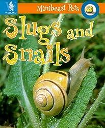 Minibeast Pets: Slugs and Snails