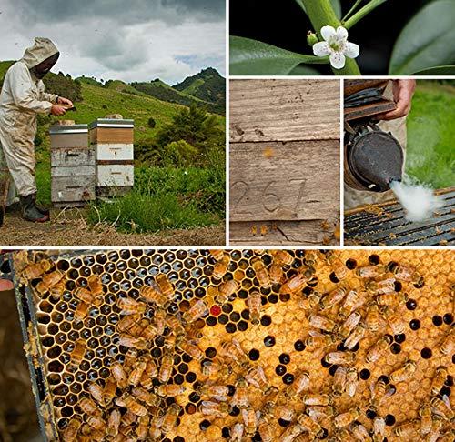 Manuka Honey UMF15+ bee-Friendly, eco-Friendly, raw and Pure by Tahi … (250 Gram) by Tahi (Image #5)