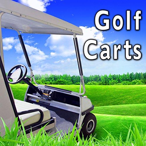 Electric Golf Cart: Short Reverse Warning Buzzer