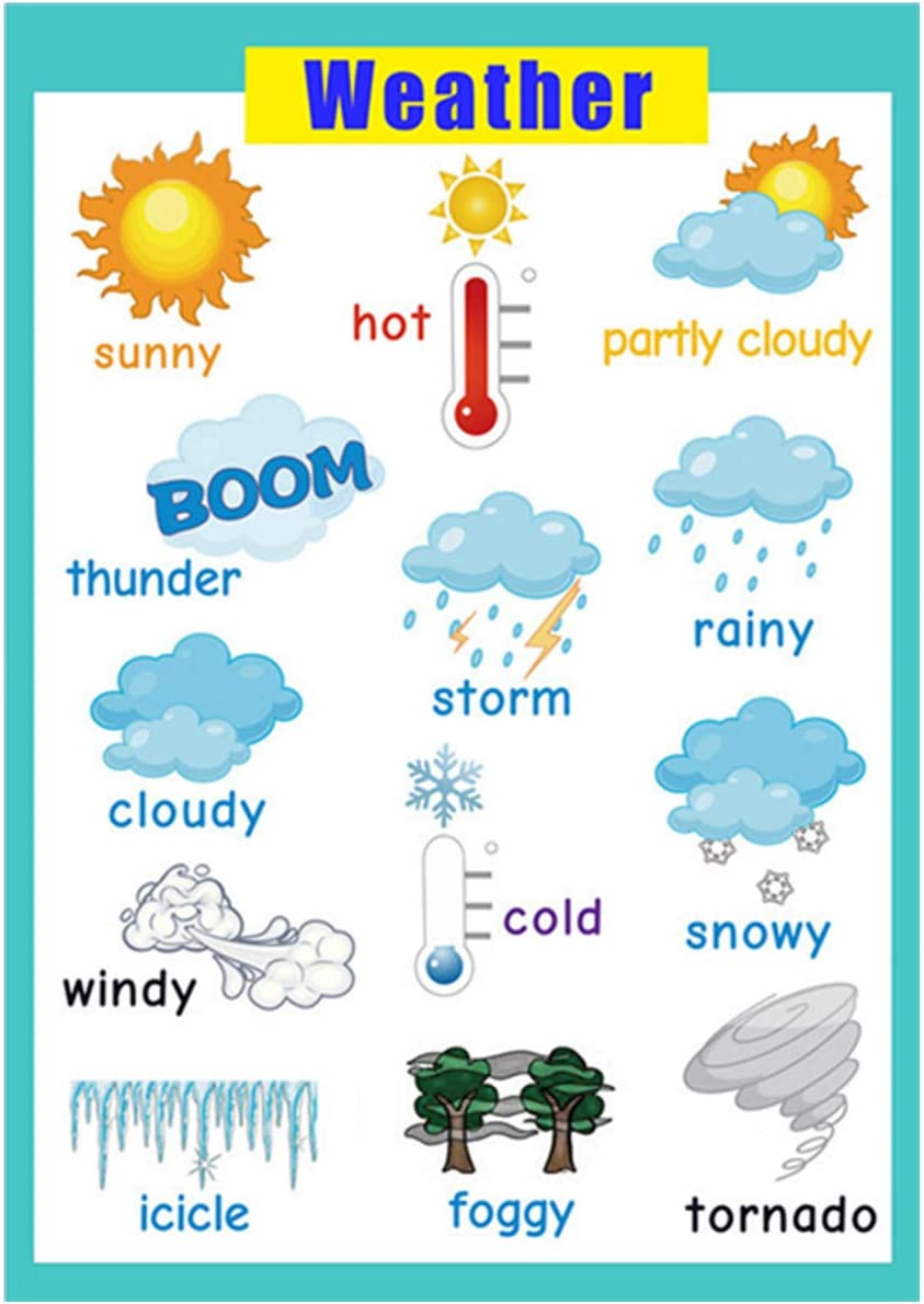 Educational posters | Laminated charts for preschool classroom decorations | Kindergarten posters for classroom toddler wall decor-17x24 in – weather poster
