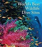 Worlds Best Wildlife Dive Sites