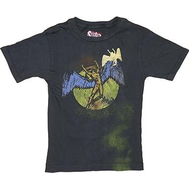 d37b0cbd0 Amazon.com: Led Zeppelin Little Boys' Childrens T-shirt 12T Grey ...