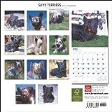 Skye Terriers 2011 Calendar