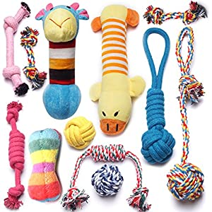YUNKINGDOM (Pack of 12) Dog Rope Toys Squeaky Plush Dog Toys,Dog Chew Toys Set Puppies Small Dogs(Pack of 12)