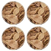 Liili Natural Rubber Round Coasters IMAGE ID 32701109 With the arrival of autumn the ground has been full of leaves in a chestnut forest