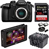 Panasonic Lumix GH5 Body 4K Mirrorless Camera with Ikan DH5e 5 4K Signal LCD Field Monitor Bundle