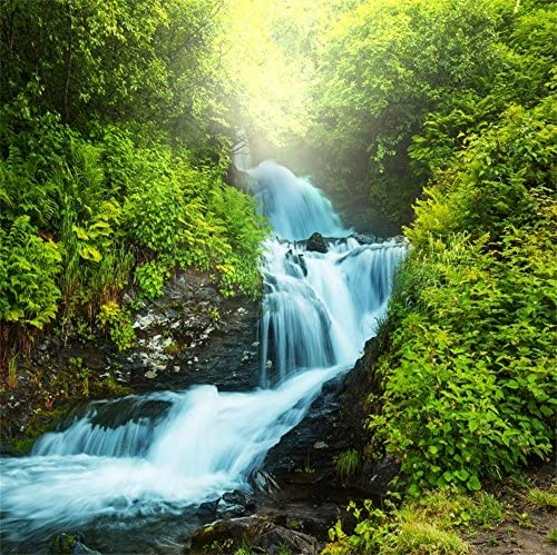 Wonderful Falls 10ft x 10ft Backdrop Computer Printed Photography Background XLX-514